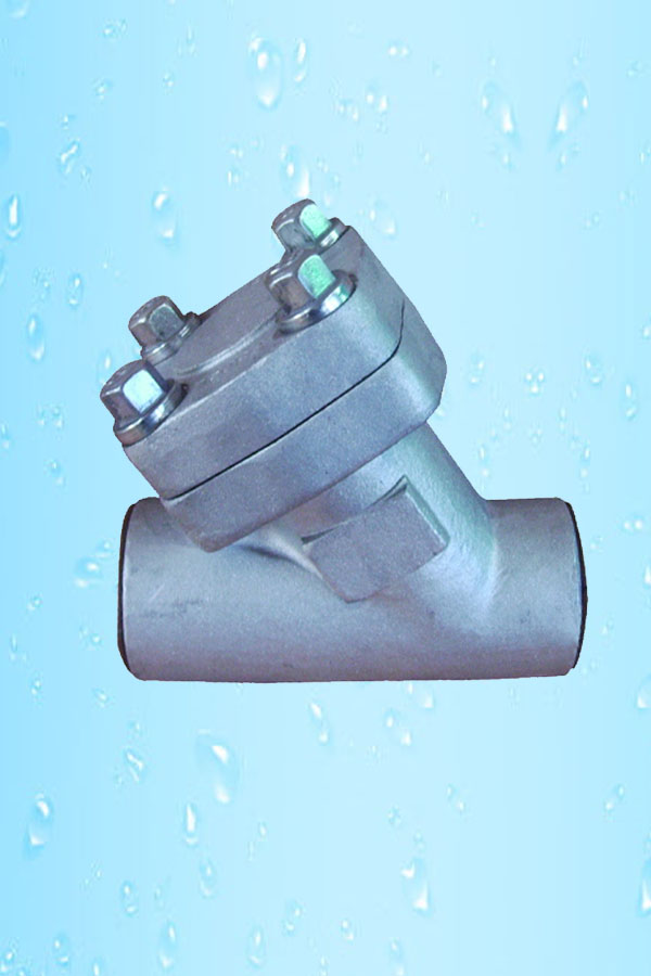 Y Strainer Socket Welded F