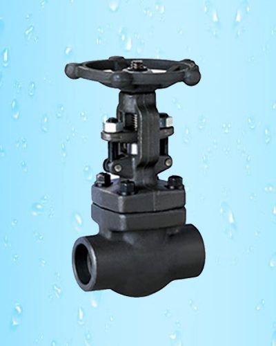 Gate Valve Socket Welded F