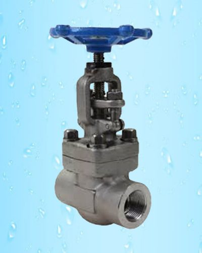 Globe Valve Threaded Piston Type F