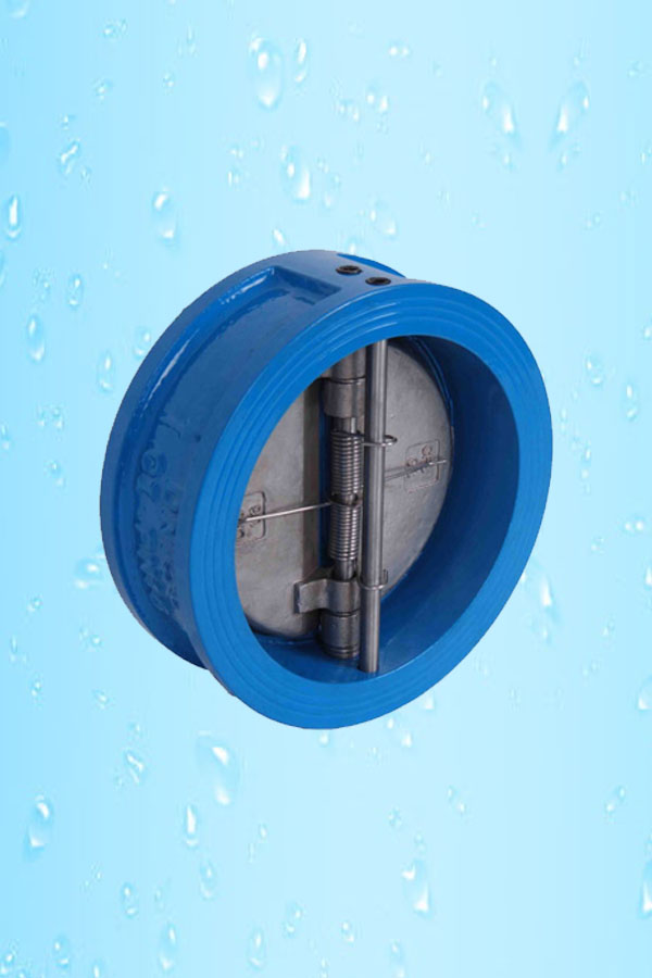 NRV Flanged Disc Type F